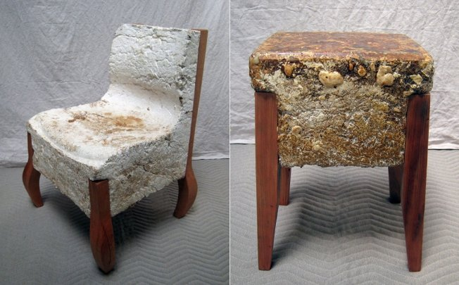 Phil Ross Uses Fungus To Make Bricks And Furniture South