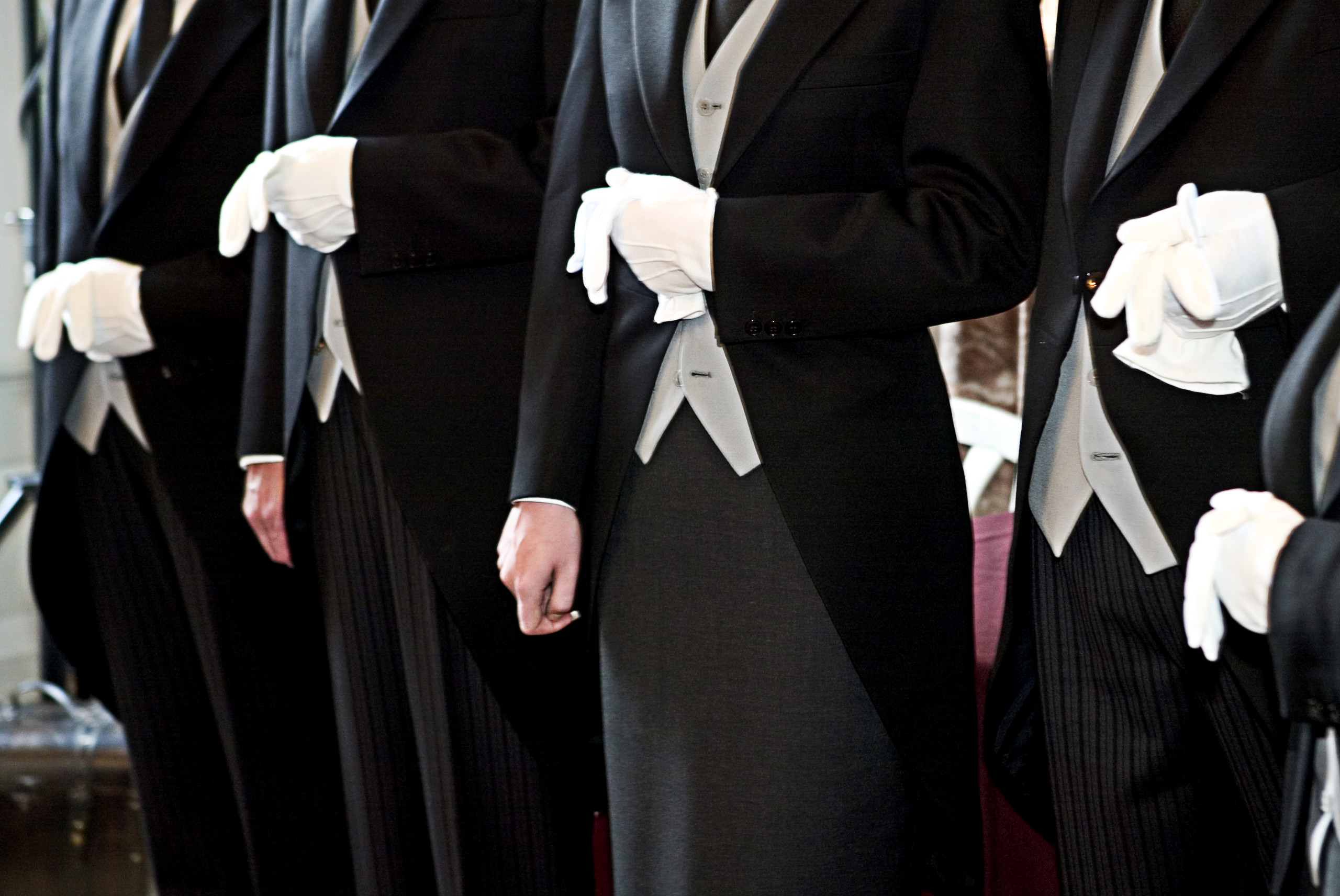butler service A butler is a domestic worker in a large householdin great houses, the household is sometimes divided into departments with the butler in charge of the dining room, wine cellar, and pantry.