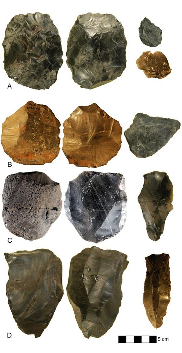 """a review of the article early homo erectus tools in china But the most incredible tools that erectus made were """"homo erectus needs that said i think homo heidelbergensis (another early human who lived."""
