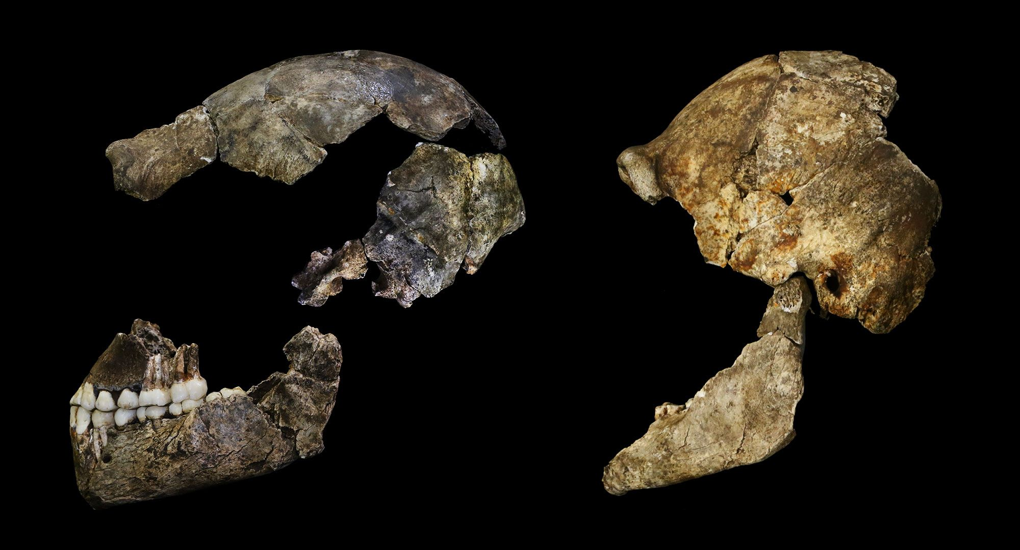 a review of the article early homo erectus tools in china In the january/february issue of archaeology magazine, the article early homo erectus tools in china holds additional, yet questionable information about the foundations of the genus homo after recent findings of stone tools and animal bones at renzidong (renzi cave) in anhui province, eastern .