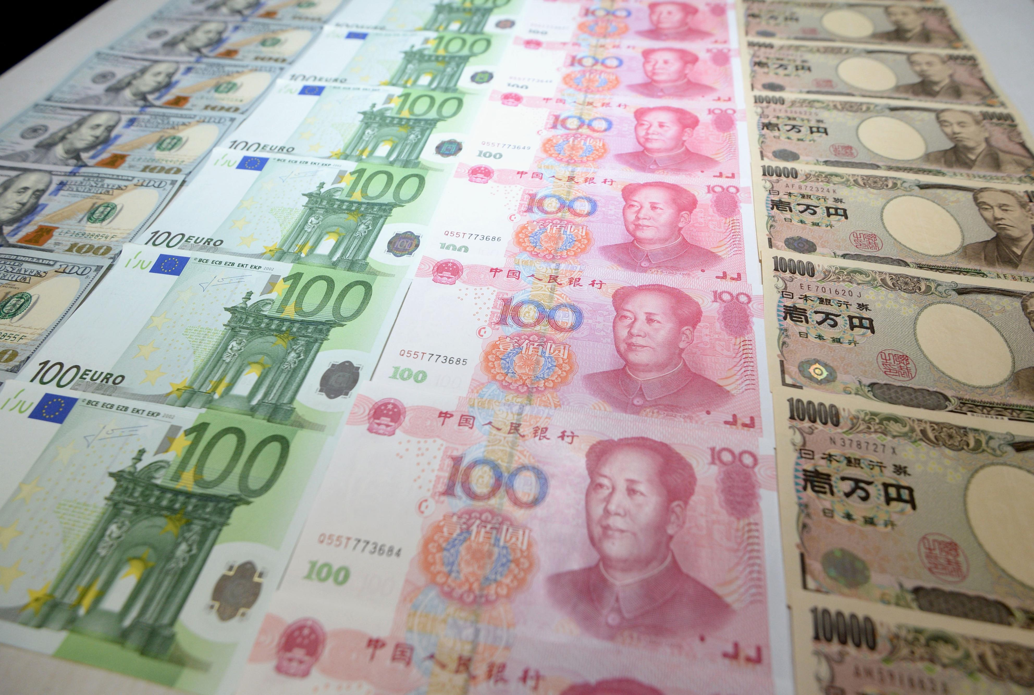 The rise of the renminbi how adding chinas yuan to imfs sdr the biocorpaavc Gallery