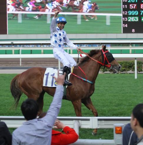 race horse betting strategies martingale