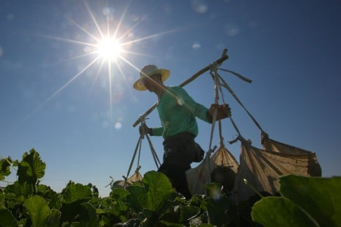 5fac897bf9097 China s restive Xinjiang region scorched by heatwave as record ...