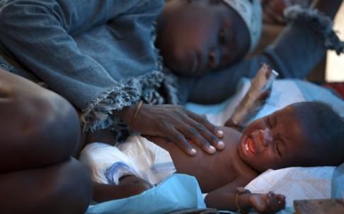 DNA study links Nepal's cholera bug to Haitian epidemic