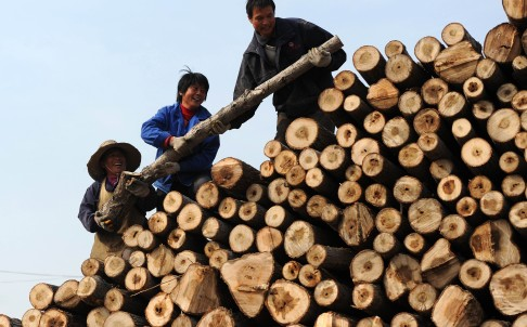 china-environment-climate-forest_wh310_32762157.jpg