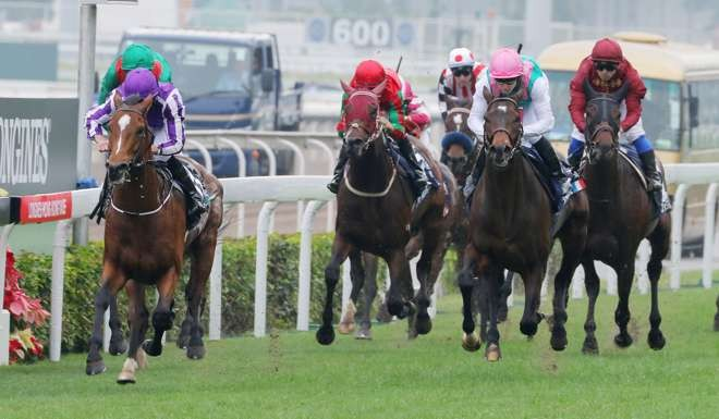 Classy Highland Reel The Standout As He Tries To Defend His Hong